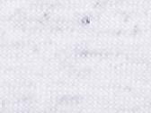White Fleck Triblend